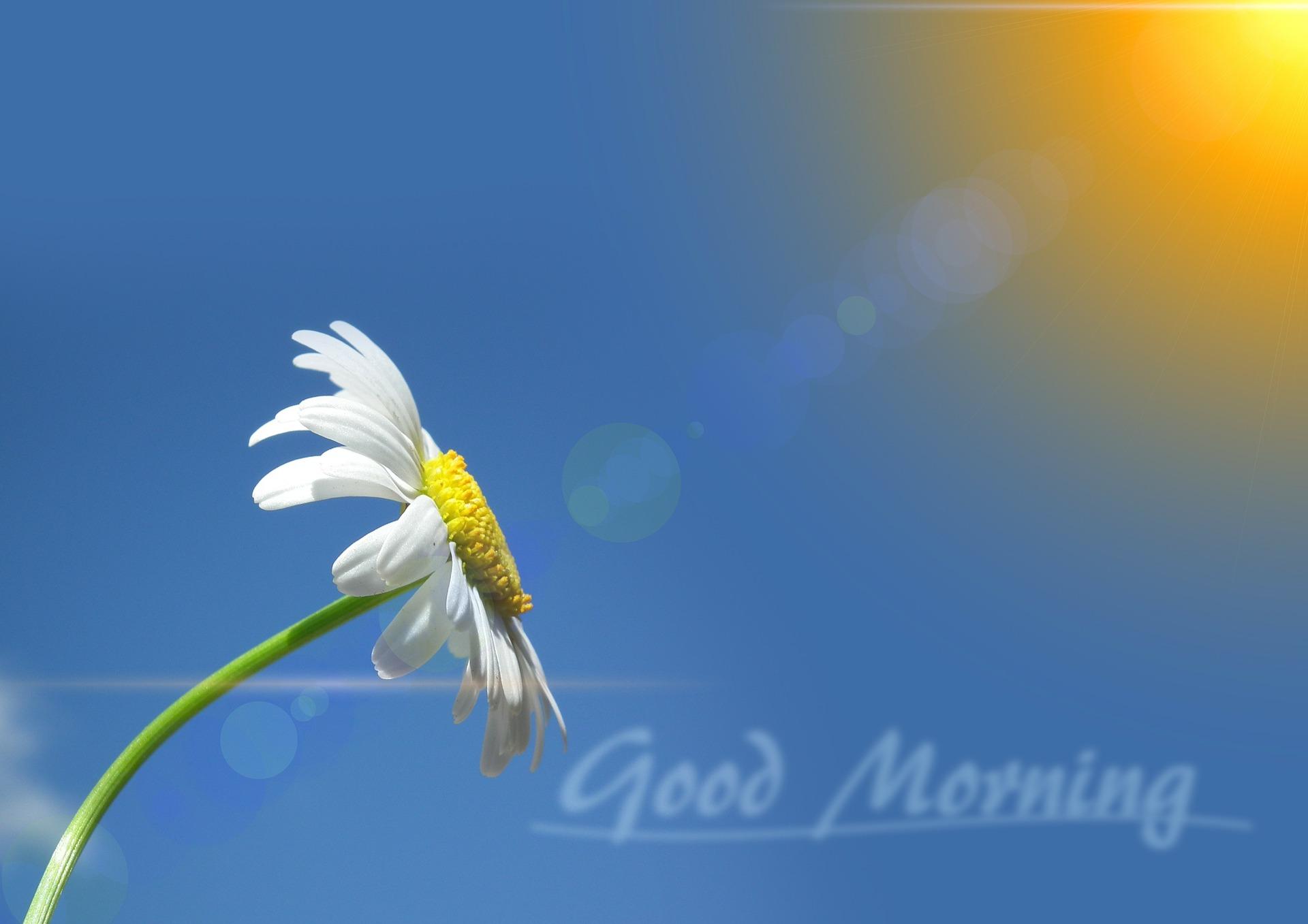 Για μία θετική καθημερινότητα ξεκινήστε με μία ζεστή καλημέρα…